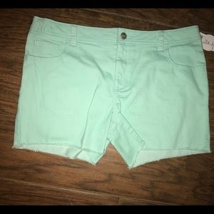 Brand new Demin shorts size 16 plus